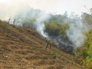 Burning Stubble - Thailand